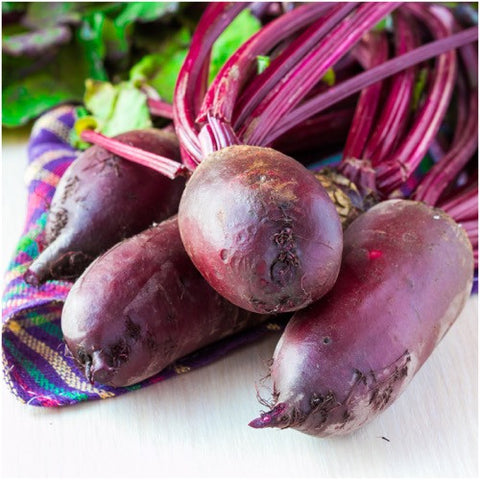 Cylindra Beet Seeds (Beta vulgaris)