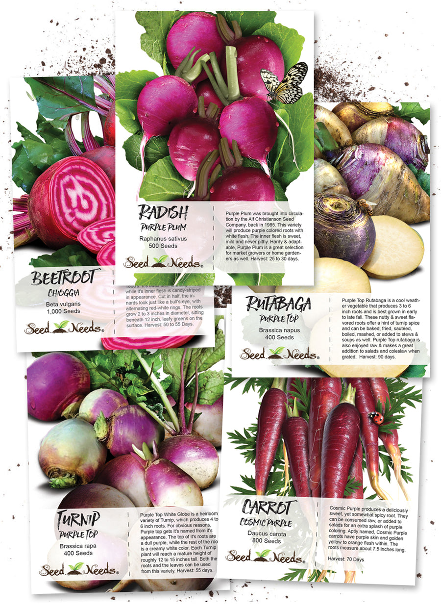 Edible roots and bulbs collection