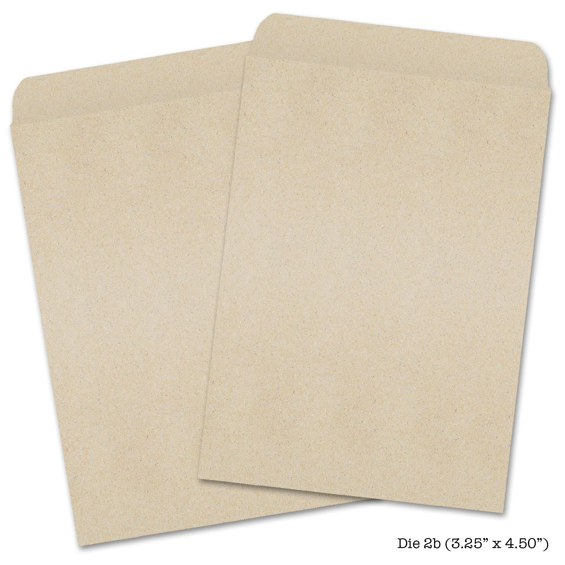 picture about Blank Seed Packets Printable named Kraft Seed Envelopes