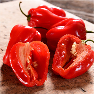 Hot Pepper Seeds