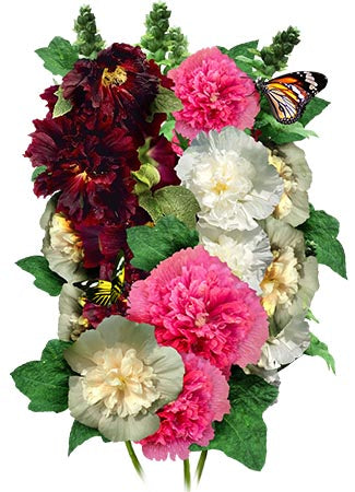Double Majorette Hollyhock Mixture (Alcea rosea)