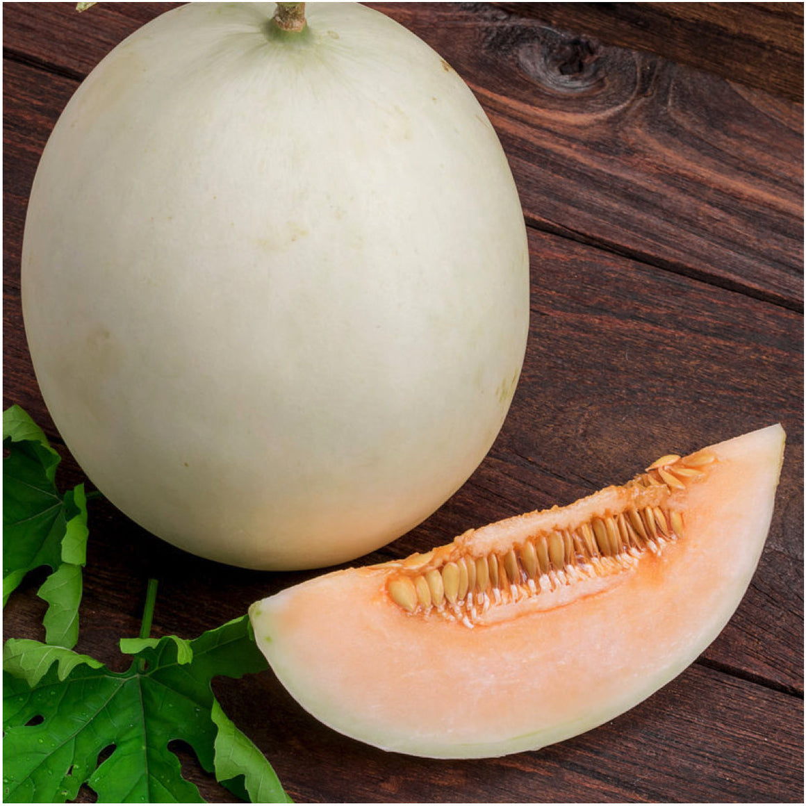 Orange Honeydew Melon Seeds (Cucumis melo)