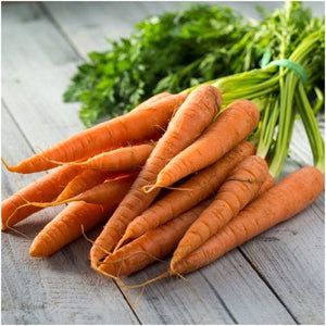 imperator 58 Carrots