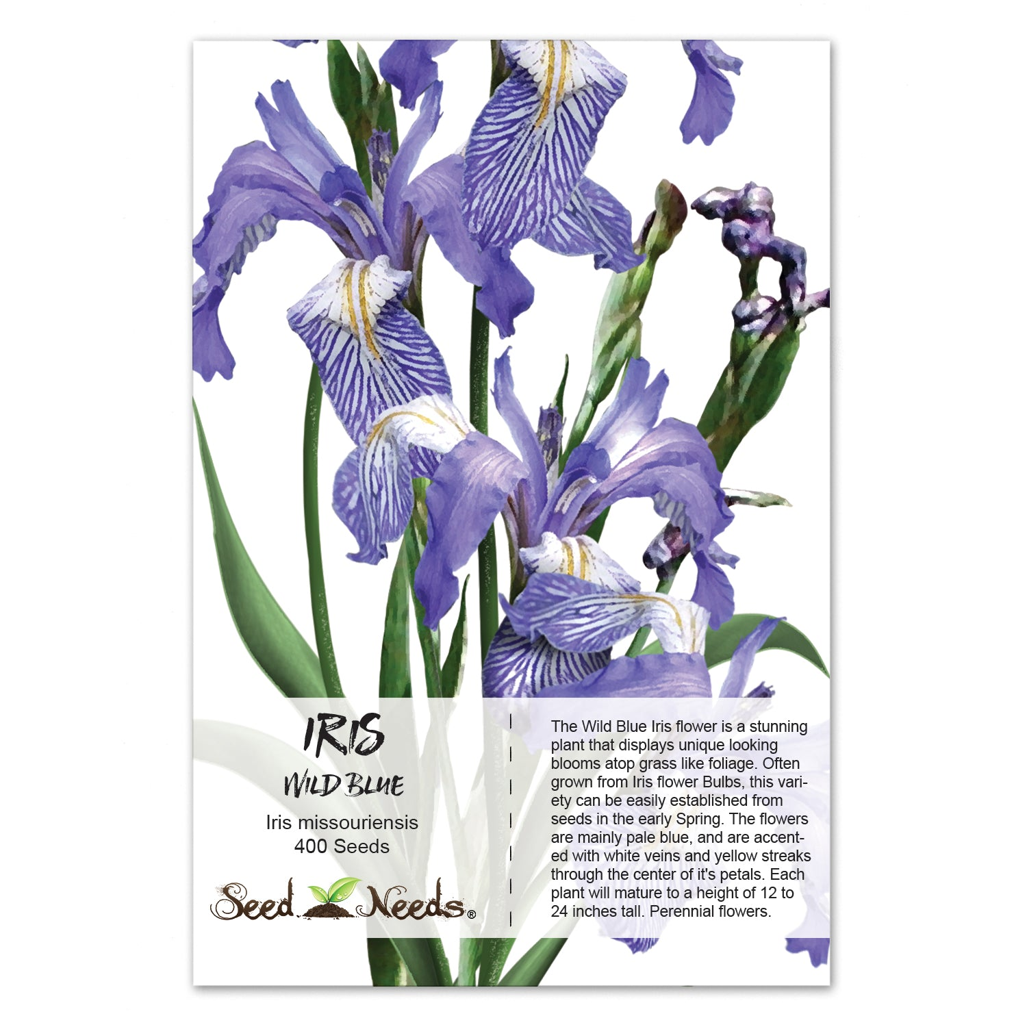 Wild Blue Iris Flower Seeds Iris Missouriensis