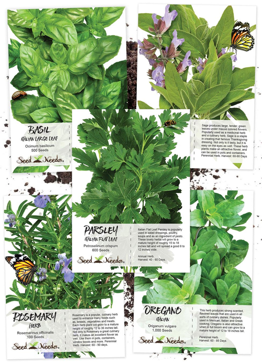 Italian Culinary Herb Seed Collection