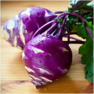 Purple Kohlrabi Seeds
