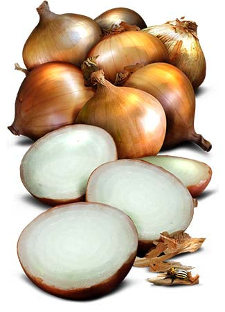 Walla Walla Onion Seeds (Allium cepa)