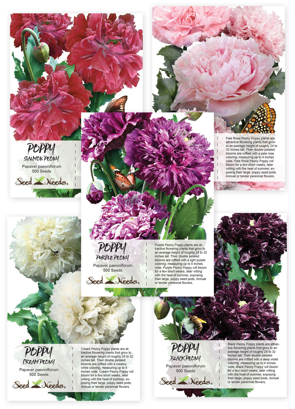 Peony Poppy Seed Collection