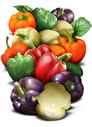 Rainbow Bell Pepper Seeds