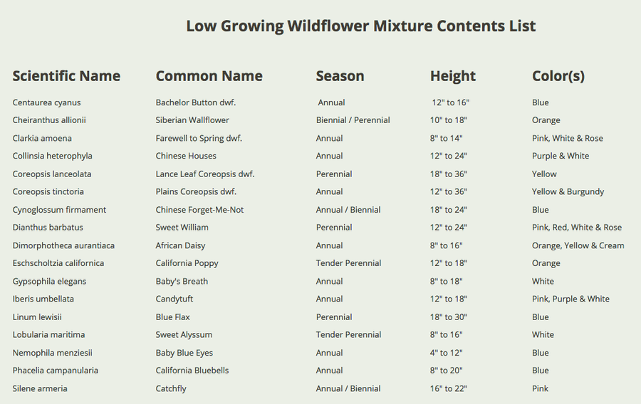 low growing wildflower mixture