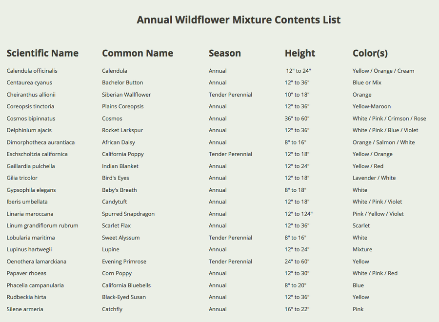 annual wildflower mixture