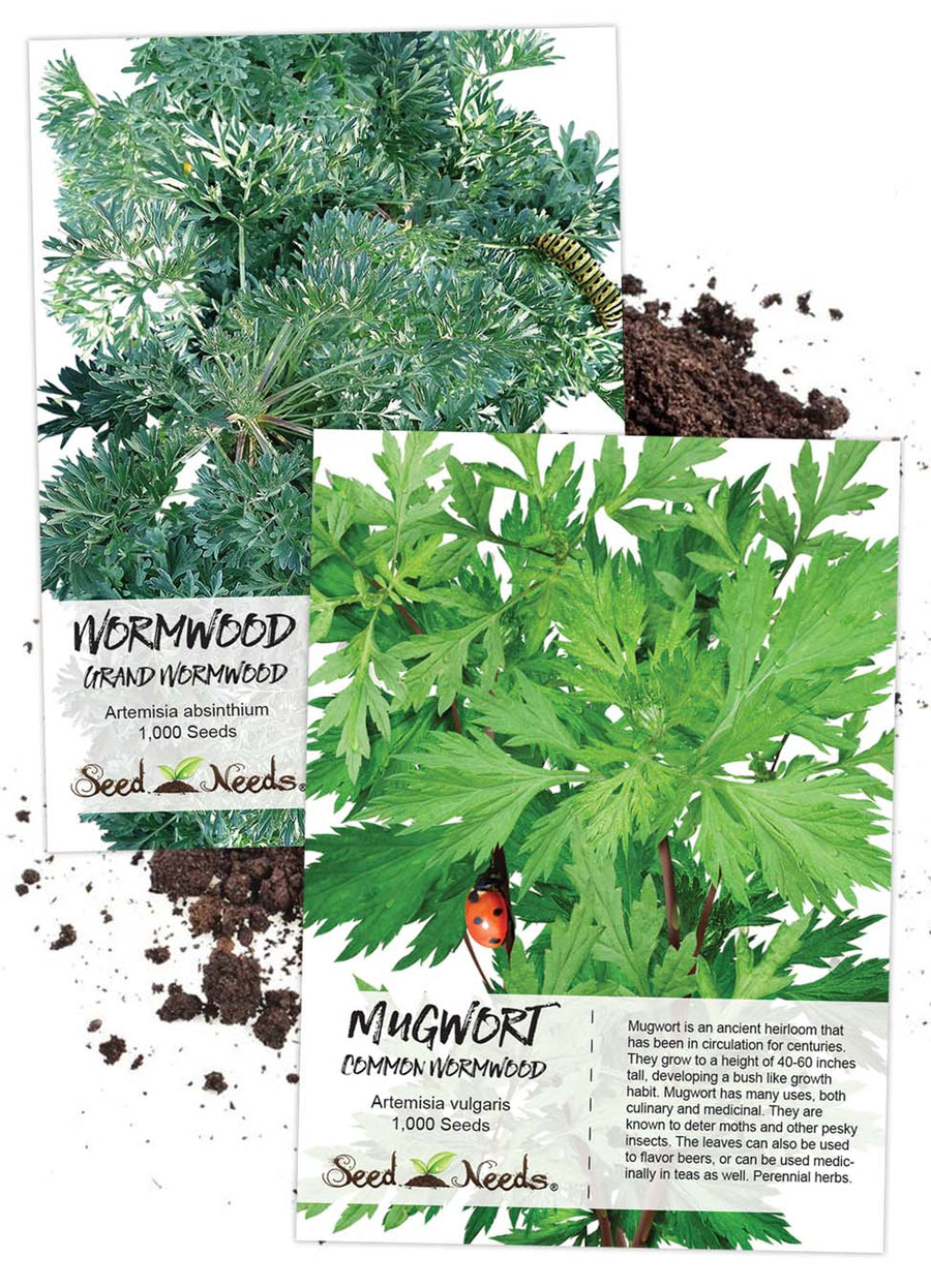 Wormwood Seed Collection