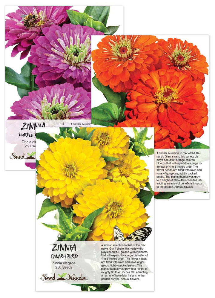 Zinnia Seed Packet Collection