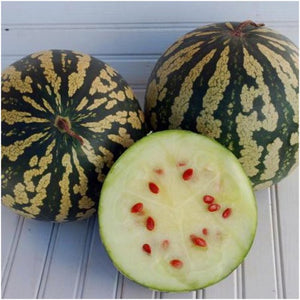citron red seed watermelon