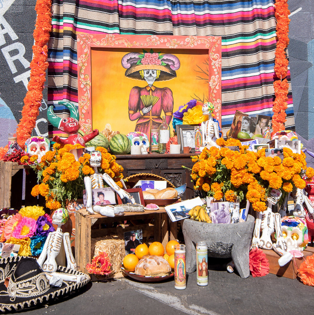 Day of the Dead Festival in the heart of North Park Hosted by Artelexia