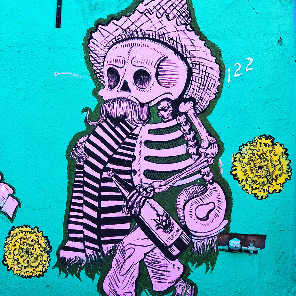 Five Must-see Street Art Murals in Oaxaca