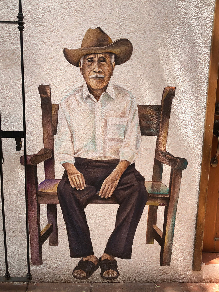 Artelexia's Favorite Street Art Murals to See In Oaxaca