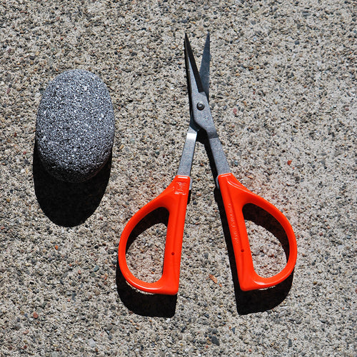 Garden: Stainless Steel Pruning Scissors