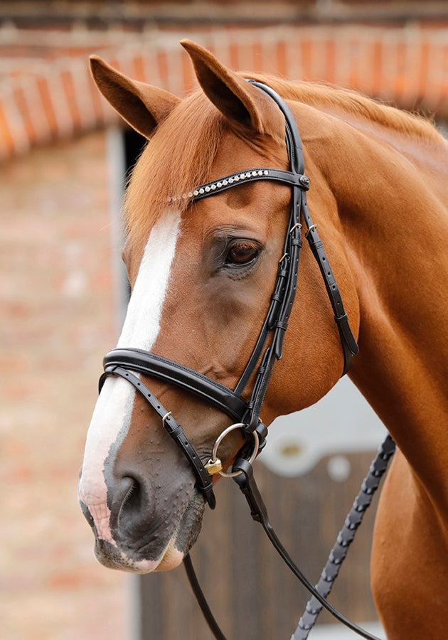 PE Sport Bellissima Crank Bridle with Diamante Browband
