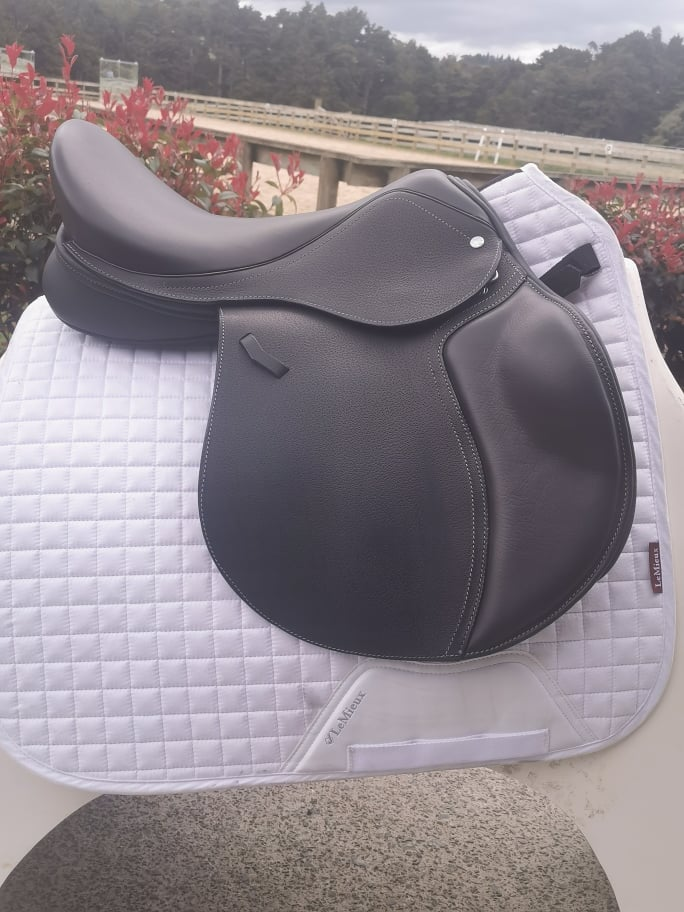 Loxley Foxhunter 17""
