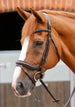 PE Sport Favoloso Anatomic Bridle