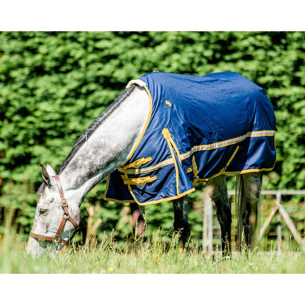 CAVALLINO NORTHHAMPTON NO FILL TURNOUT RUG