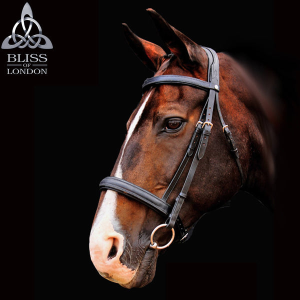 Bliss of London Loxley Ramiro Bridle