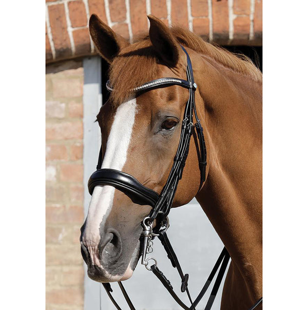 Abriano Anatomic Double Bridle