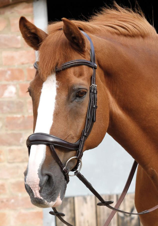 Savuto Anatomic Bridle with Crank Noseband & Flash