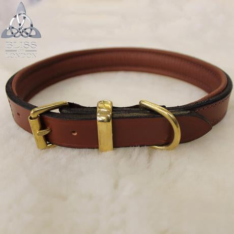 Padded Solid Leather Dog Collar