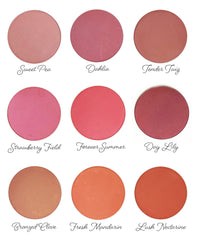 Pure Anada Pressed Mineral Blush Color Chart