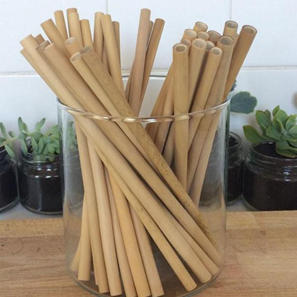 All Things Being Eco Natural Bamboo Reusable Straw