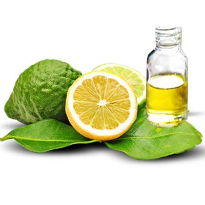 All Things Being Eco - Organic Bergamot Bulk Essential Oil