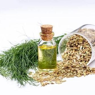 All Things Being Eco - Zero Waste Organic Fennel Bulk Essential Oil