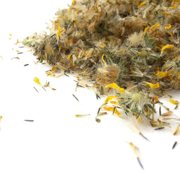 All Things Being Eco Natural Dried Arnica Flowers Bulk