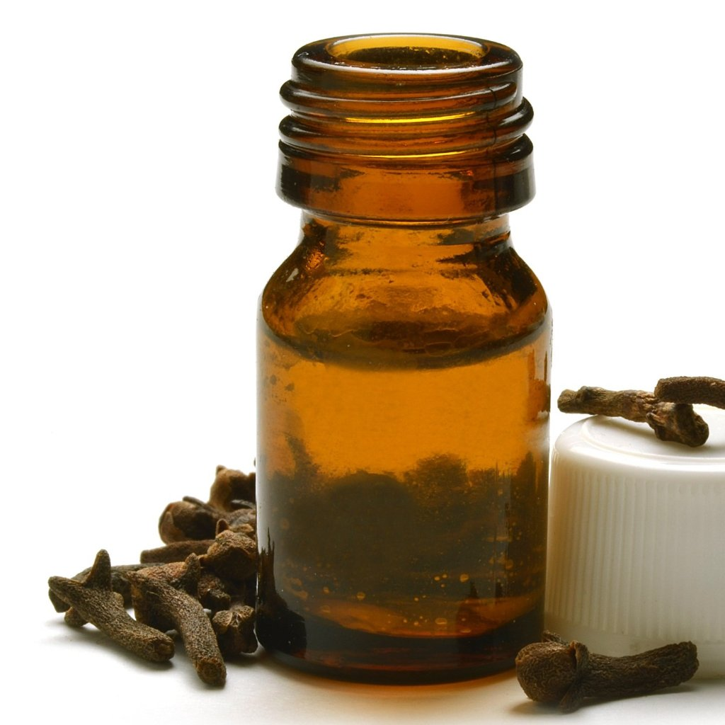 All Things Being Eco - Organic Clove Bud Bulk Essential Oil