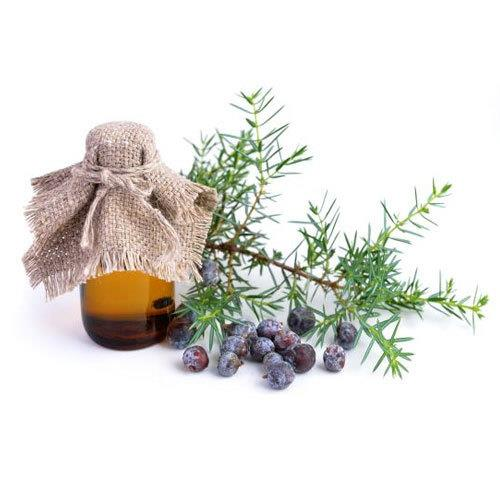 All Things Being Eco - Zero Waste Organic Juniper Berry Bulk Essential Oil
