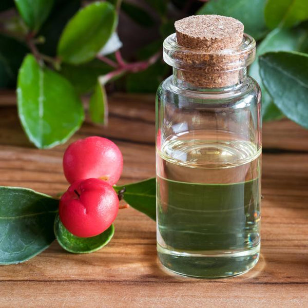 All Things Being Eco - Organic Wintergreen Bulk Essential Oil