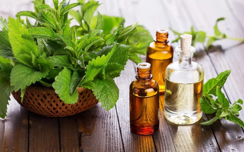Image result for Patchouli essential oil