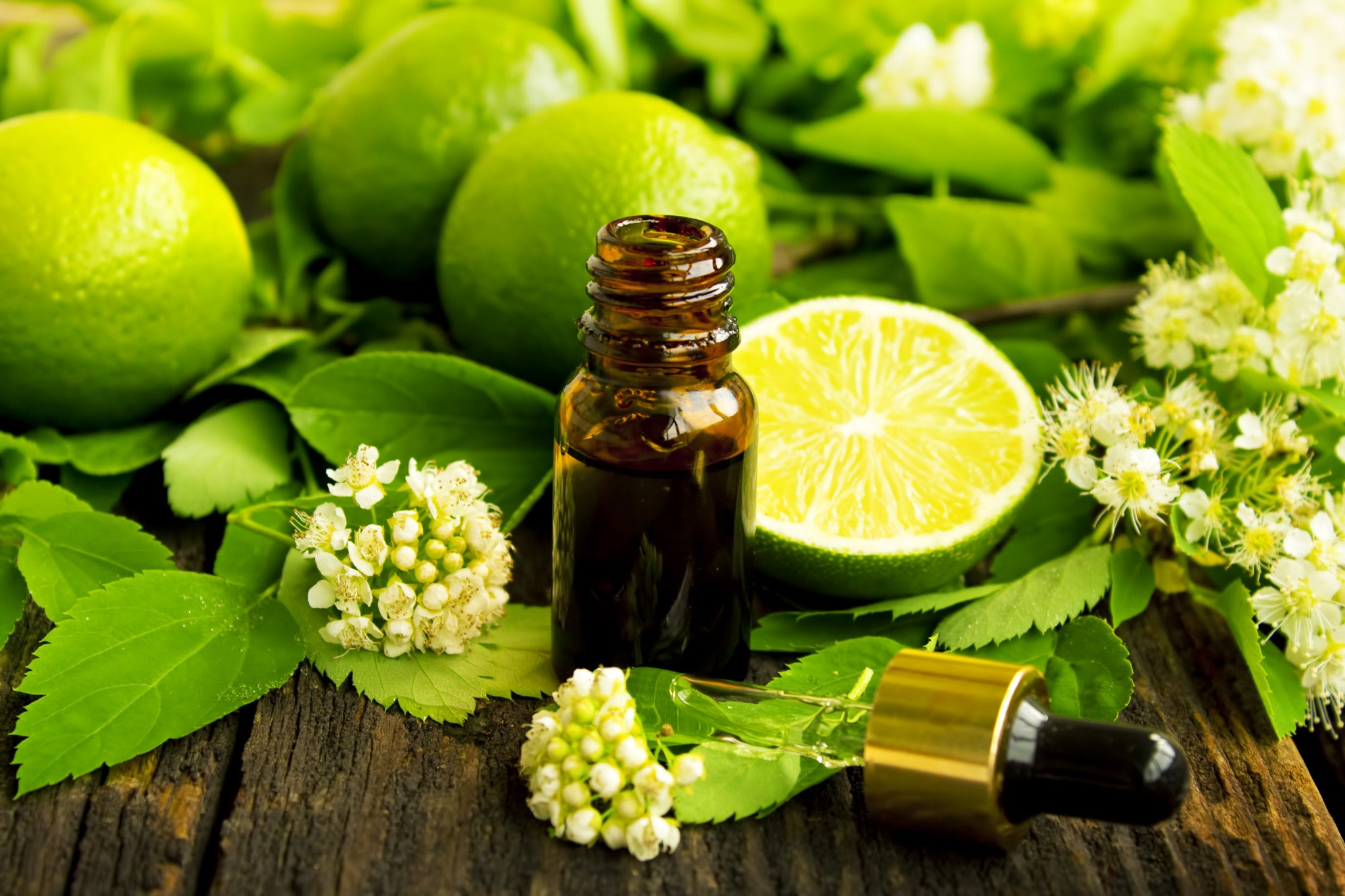 All Things Being Eco Organic Lime Essential Oil Zero Waste