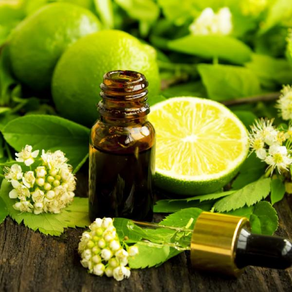 All Things Being Eco Zero Waste Organic Lime Essential Oil Bulk Ingredient