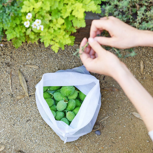 Flip & Tumble - Produce Bags All Things Being Eco