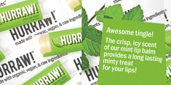 Hurraw! - Mint Lip Balm Vegan Raw All Things Being Eco chilliwack