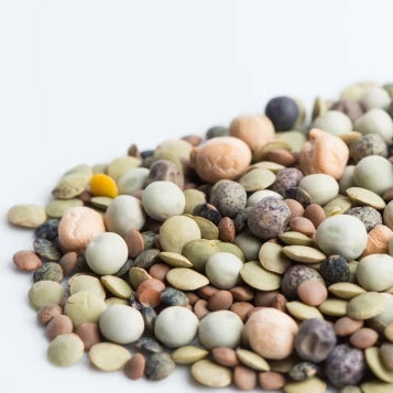 Mumm's Organic Sprouting Seeds - Crunchy Bean Mix 125g All Things Being Eco Chilliwack