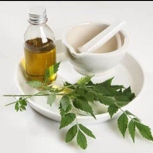 All Things Being Eco - Bulk Organic Neem Carrier Oil