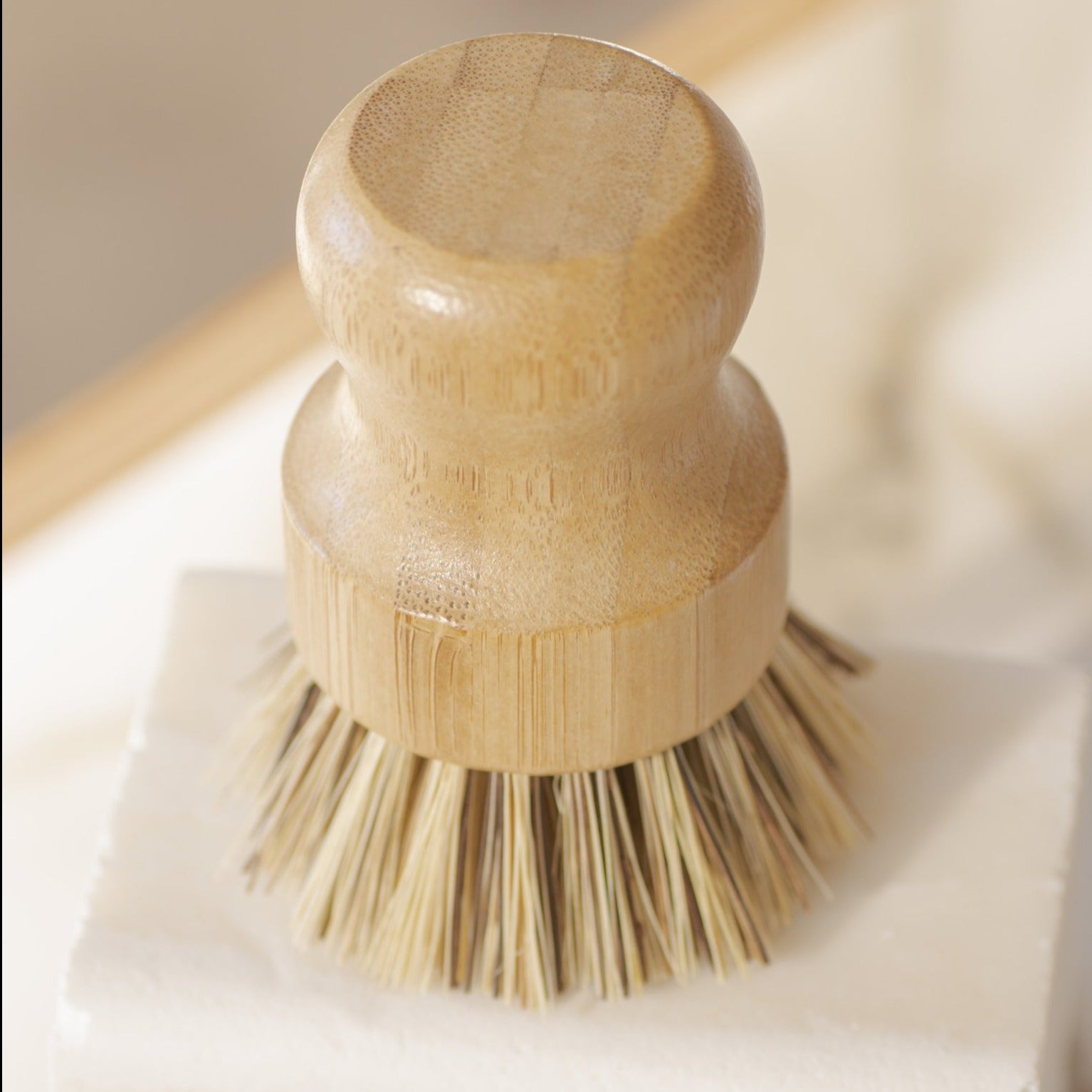 No Tox Life - Casa Agave Pot Scrubbing Brush All Things Being Eco Chilliwack