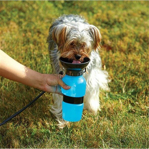 Outdoor Portable Pet Dog Drinking Water Bottle Cup Blue/Pink