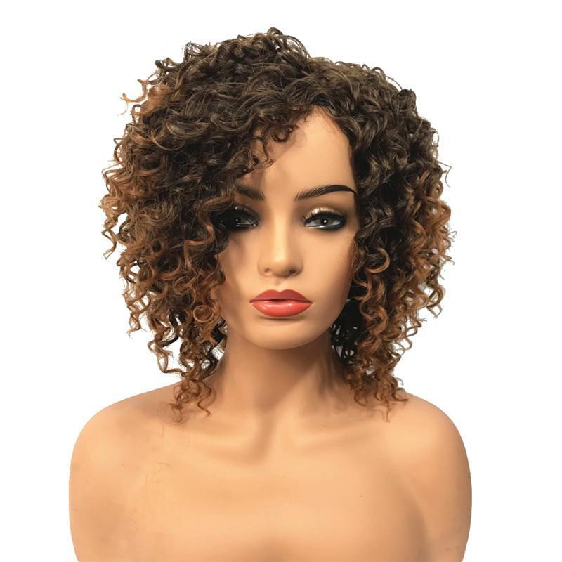 Wavy Curly Wig  Synthetic 2T30