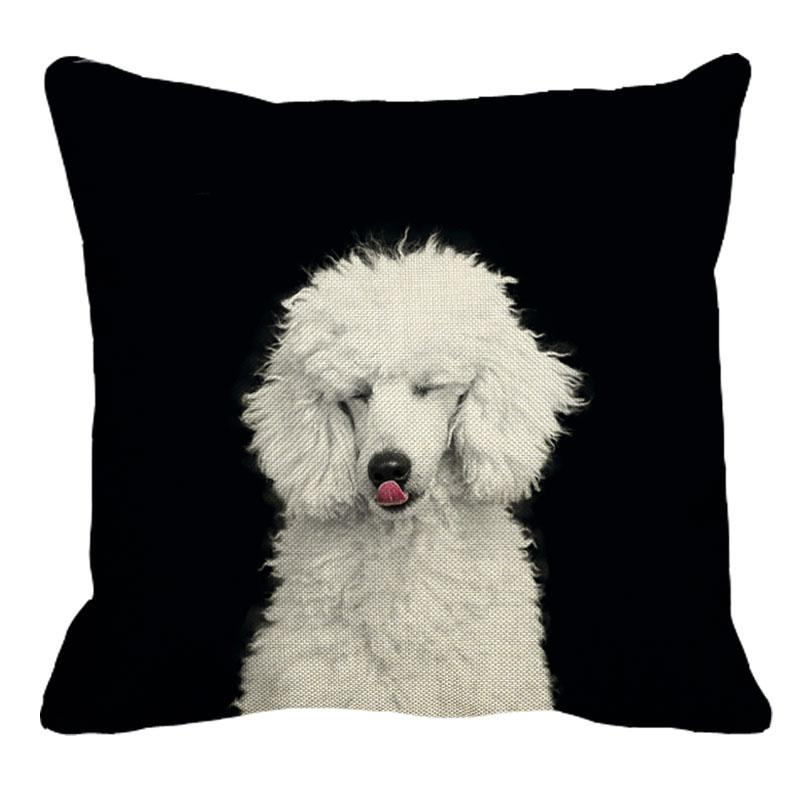 Cushion Cover 1 Poodle Pillowcase Home Sofa Square Pillow Cover