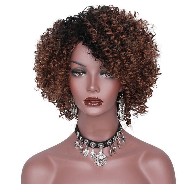 Afro Curly  African American Hair Wigs Ombre